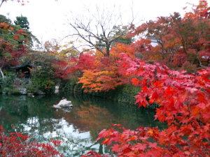 永観堂・境内の池を向こうに